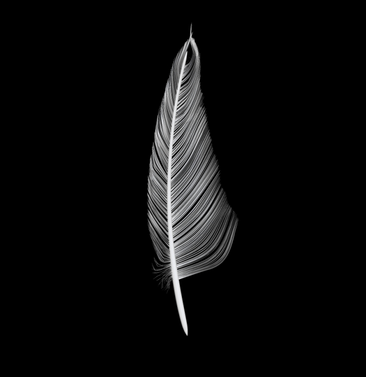 3D Feather Sculpt 1