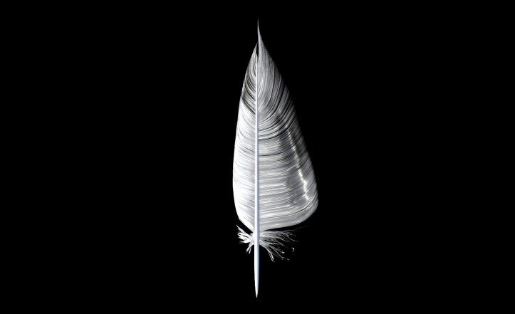 3D Feather Sculpt 4