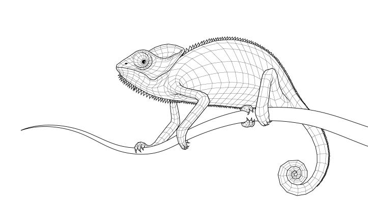 "Digital drawing ""The Chameleon"", 2016"